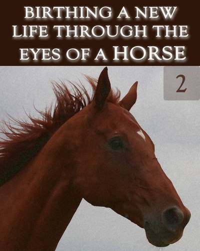 Full birthing a new life through the eyes of a horse part 2