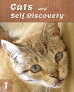 Feature thumb cats and self discovery part 1