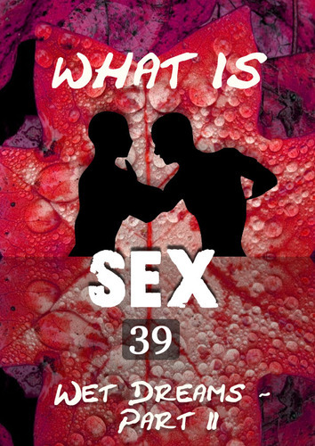Full what is sex wet dreams part 2 part 39