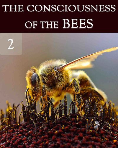 Full the consciousness of the bees part 2