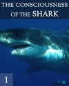 Tile the consciousness of the great white shark part 1