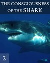 Tile the consciousness of the great white shark part 2
