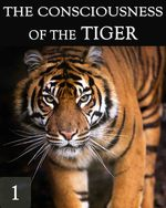 Feature thumb the consciousness of the tiger part 1