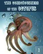 Feature thumb the consciousness of the octopus part 1