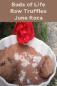 Tile june roca buds of life raw truffles