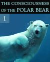 Tile the consciousness of the polar bear part 1