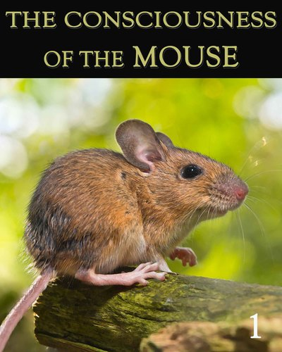 Full the consciousness of the mouse part 1