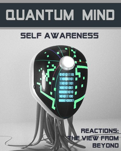 Full reactions the view from beyond quantum mind self awareness