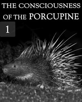 New tile the consciousness of the porcupine part 1