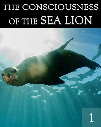 Full the consciousness of the sea lion part 1