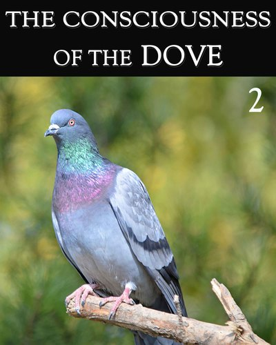 Full the consciousness of the dove part 2