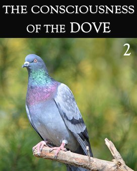 New tile the consciousness of the dove part 2