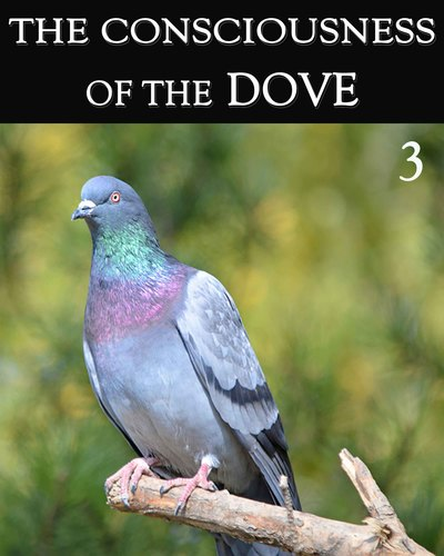 Full the consciousness of the dove part 3