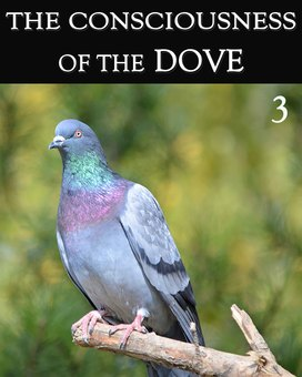 New tile the consciousness of the dove part 3