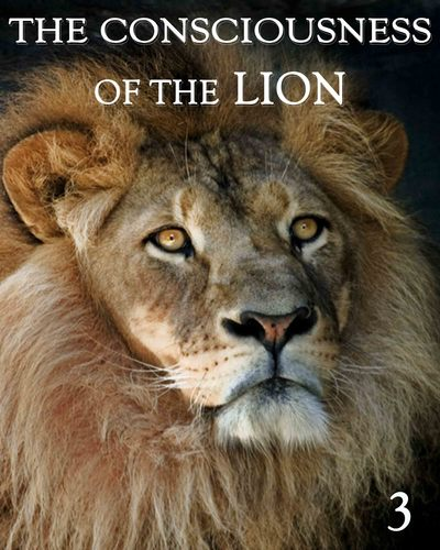 Full the consciousness of the lion part 3