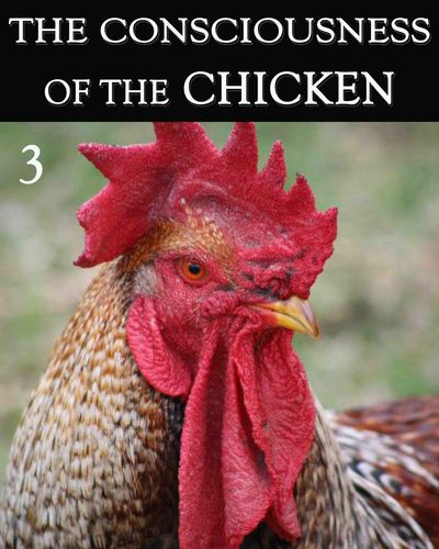 Full the consciousness of the chicken part 3