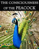 Feature thumb the consciousness of the peacock part 2