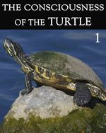 Feature thumb the consciousness of the turtle part 1