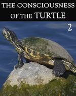 Feature thumb the consciousness of the turtle part 2