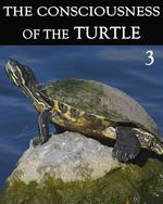Feature thumb the consciousness of the turtle part 3
