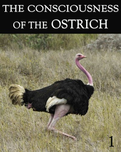 Full the consciousness of the ostrich part 1