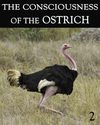 Tile the consciousness of the ostrich part 2