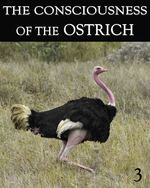 Feature thumb the consciousness of the ostrich part 3