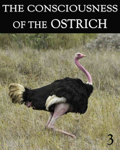 Full the consciousness of the ostrich part 3