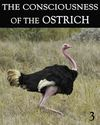Tile the consciousness of the ostrich part 3