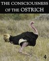 Tile the consciousness of the ostrich part 4