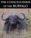 Tile the consciousness of the buffalo part 1