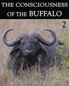 Tile the consciousness of the buffalo part 2