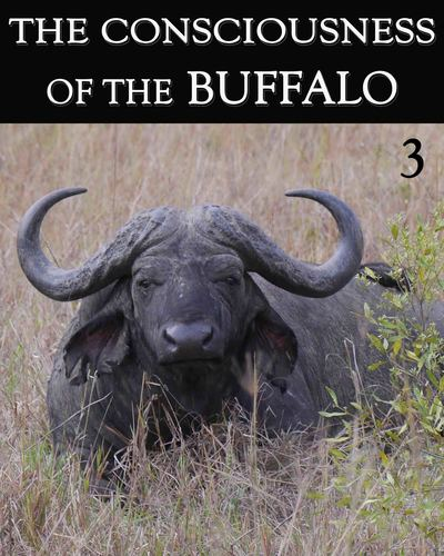 Full the consciousness of the buffalo part 3