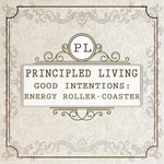 Feature thumb good intentions energy roller coaster principled living