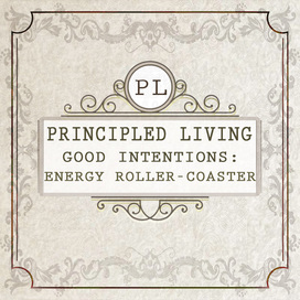 New tile good intentions energy roller coaster principled living