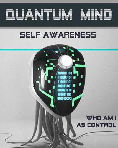 Full who am i as control quantum mind self awareness