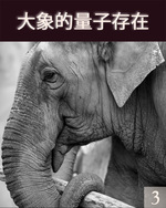 Feature thumb quantum existence of the elephant part 3 ch