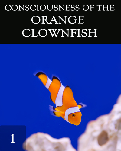 Full the consciousness of the orange clownfish
