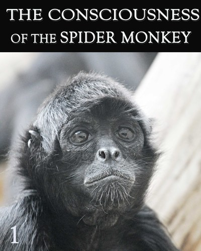 Full consciousness of the spider monkey part 1