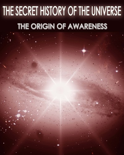 Full the secret history of the universe the origin of awareness part 3