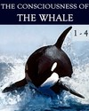 Tile the consciousness of the whale complete bundle