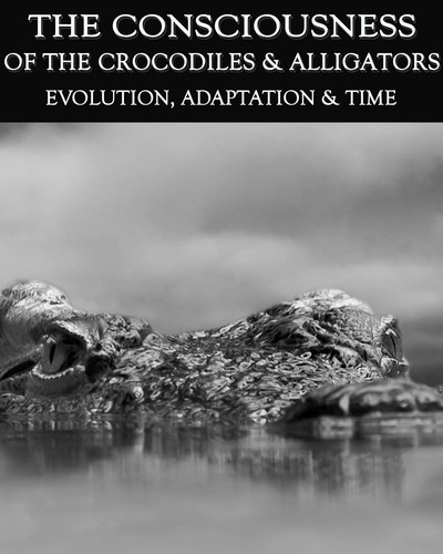 Full evolution adaptation time the consciousness of the crocodiles alligators