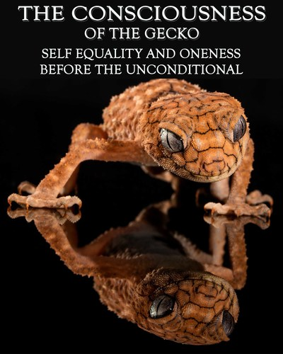 Full self equality and oneness before the unconditional the consciousness of the gecko