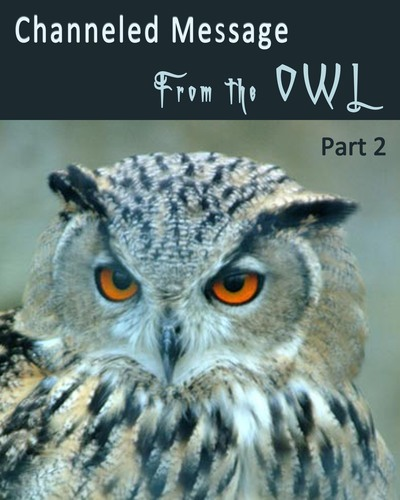 Full channeled message from the owl part 2