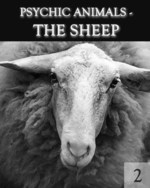 Feature thumb psychic animals the sheep part 2