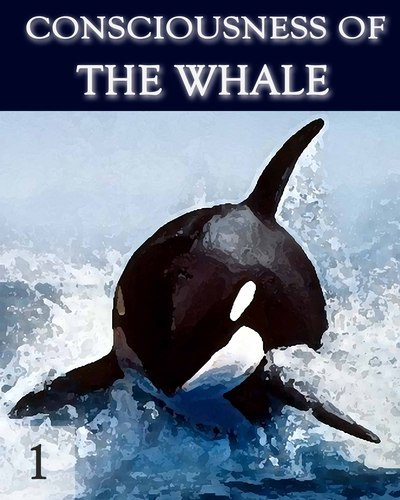 Full consciousness of the whale part 1