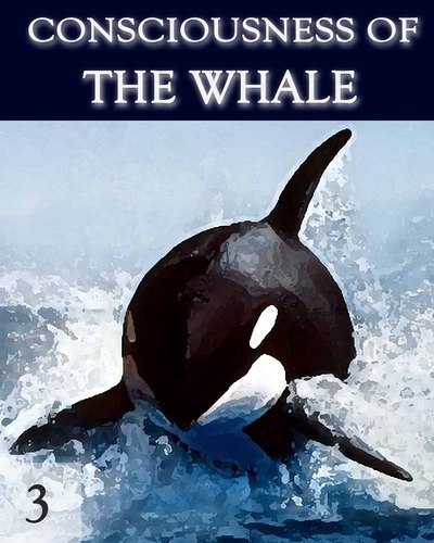Full consciousness of the whale part 3