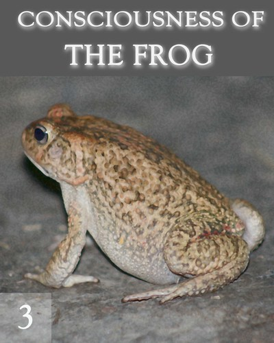 Full the consciousness of the frog part 3