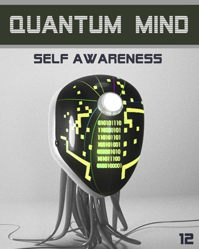 Full quantum mind self awareness step 12