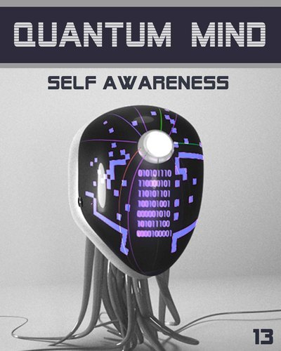 Full quantum mind self awareness step 13